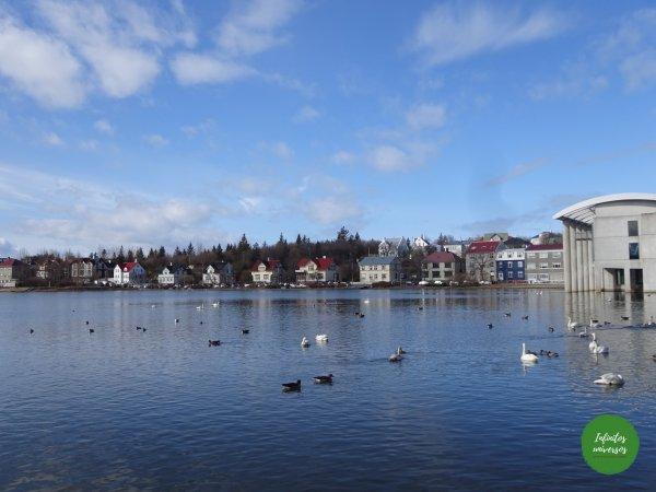 Lago Tjörnin - Qué ver en Reikiavik en un día