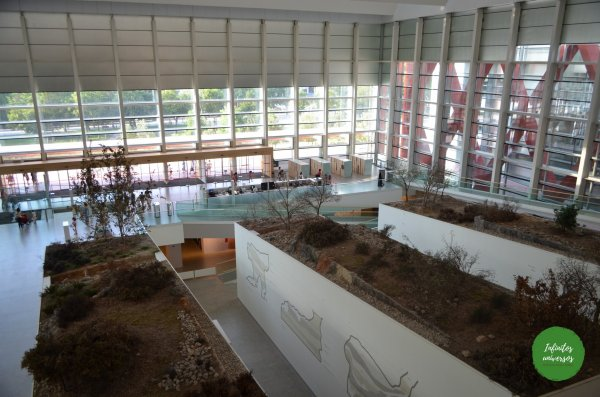 Museo de la Evolución Humana  - Qué ver en Burgos en un día