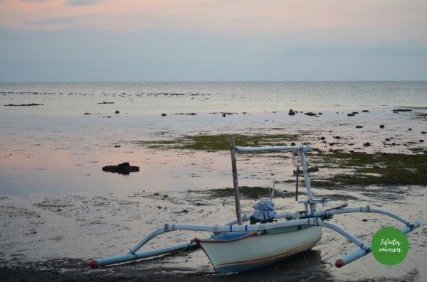 Lovina  - Qué ver en Bali en una semana